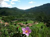 Foto 8 de Casa Rural R