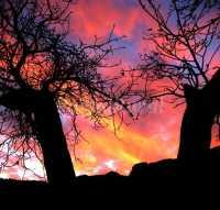 Foto 8 de Hostal Rural Calar De La Sima