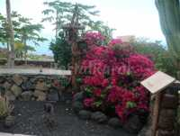 Foto 6 de Casa De Mi Abuela Maria