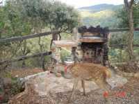 Foto 3 de Casa Rural Los Bogantes