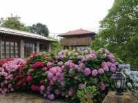 en el jardin, horriu asturiano