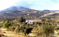 Foto 3 de Cortijo La Zorrera 1