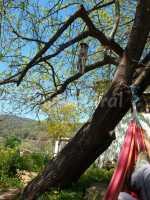 Foto 10 de Casa Rural Ahora