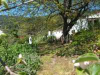 Foto 3 de Casa Rural Ahora