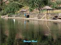 Foto 20 de Casa Rural Ramajal Rural