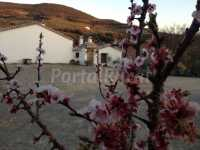 Foto 8 de Cortijo Rural Majolero
