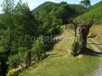 Foto 9 de Casa Rural Borda-berri