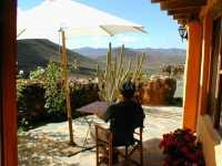 Foto 1 de La Rosa Del Taro