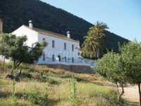 Foto 2 de Casa Rural Estepa Sevilla
