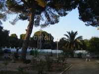 Foto 1 de Casa De Campo Cerro Muriano