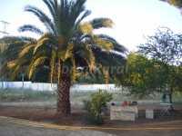 Foto 3 de Casa De Campo Cerro Muriano