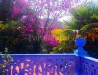 Foto 3 de El Rincón Del Agua