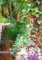 Foto 6 de El Rincón Del Agua
