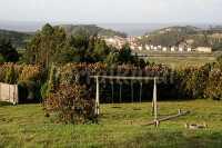 Foto 4 de Paraje Del Asturcón ***