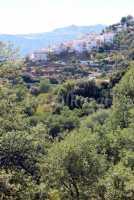 Foto 19 de Apartamentos Rurales Jardines Del Visir