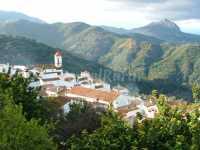 Foto 14 de Casas Rurales Jardines Del Visir
