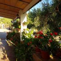 Foto 2 de Casa Rural Las Calveras