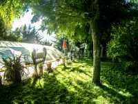 Jardín y piscina cubierta