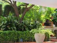 Foto 6 de El Jardín De La Abuela