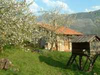 Foto 1 de Casa Del Monte