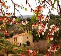 Foto 6 de Casa Rural Ca Victor
