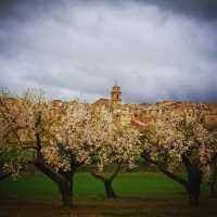 Foto 7 de Casa Rural Ca Victor