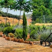 Foto 5 de La Huerta El Bao
