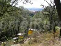 Foto 7 de Casa Rural  Azkorena