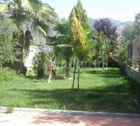 Foto 3 de Cortijo Jerónimo