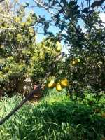 Foto 21 de Casa Rural Los Arcos