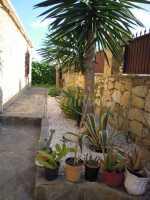Foto 7 de Casa Rural Las Yucas