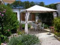 El olivo patio